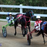 Bermuda Harness Pony Racing Feb 9 2020 (13)