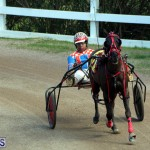 Bermuda Harness Pony Racing Feb 9 2020 (14)