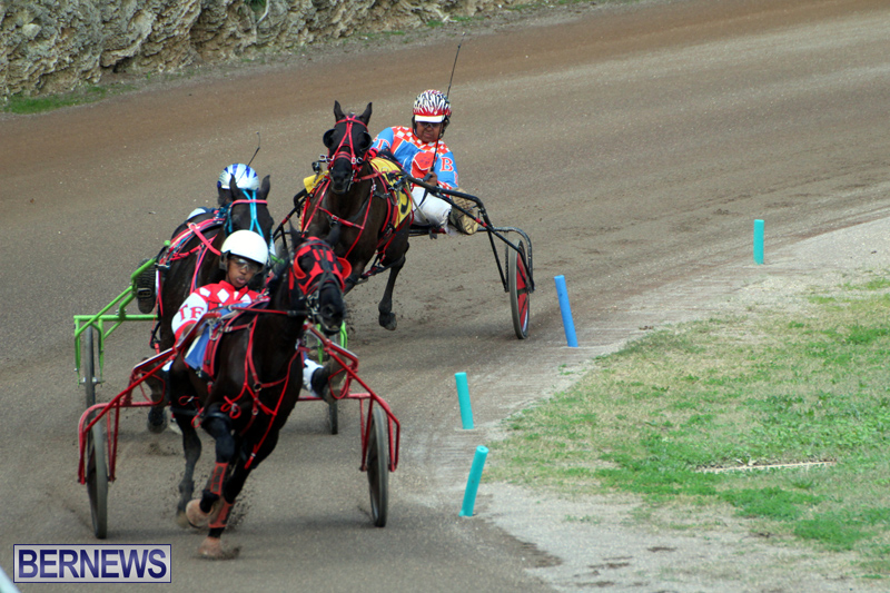 Bermuda-Harness-Pony-Racing-Feb-9-2020-15