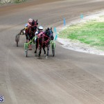 Bermuda Harness Pony Racing Feb 9 2020 (17)