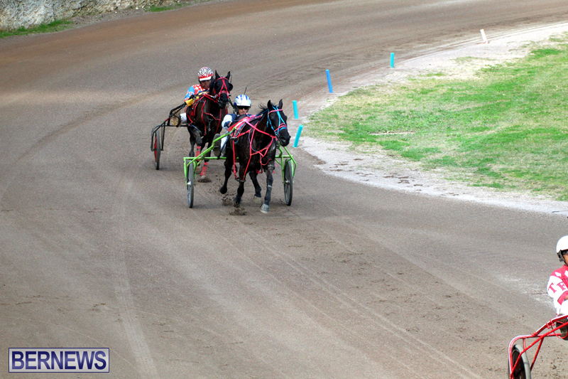 Bermuda-Harness-Pony-Racing-Feb-9-2020-17