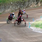 Bermuda Harness Pony Racing Feb 9 2020 (18)