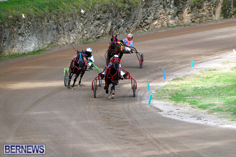 Bermuda-Harness-Pony-Racing-Feb-9-2020-18