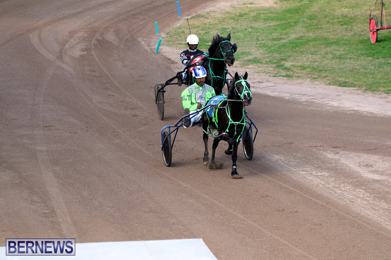 Bermuda-Harness-Pony-Racing-Feb-9-2020-2