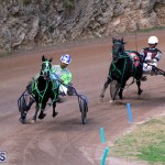 Bermuda Harness Pony Racing Feb 9 2020 (3)