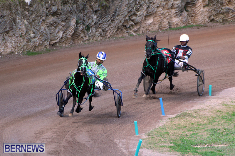 Bermuda-Harness-Pony-Racing-Feb-9-2020-3