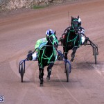 Bermuda Harness Pony Racing Feb 9 2020 (4)