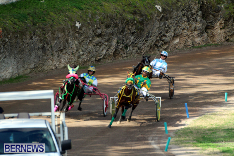 Bermuda-Harness-Pony-Racing-Feb-9-2020-6