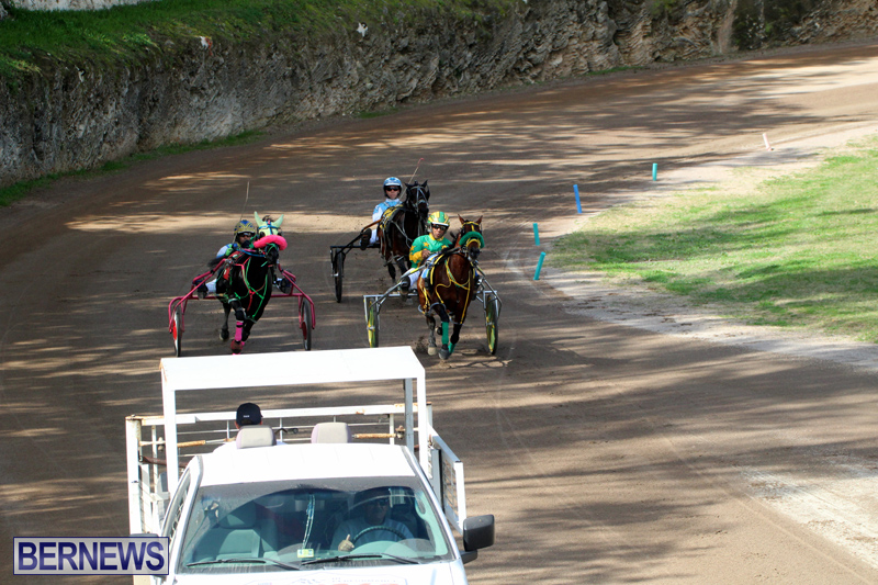 Bermuda-Harness-Pony-Racing-Feb-9-2020-7