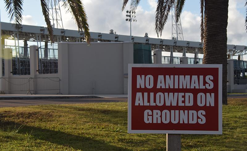 NSC No Animals Bermuda Feb 2020