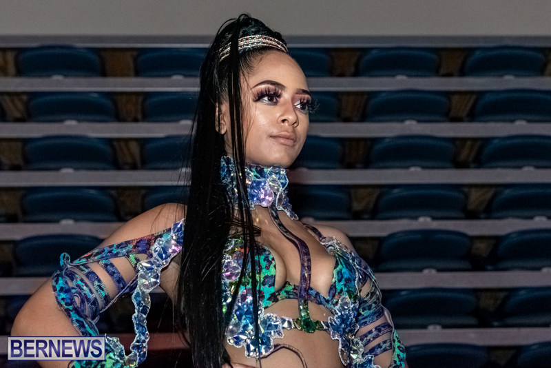 Nova-Mas-Carnival-Costume-Launch-Feb-2020-1