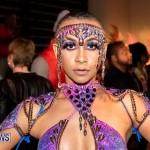 Nova Mas Carnival Costume Launch Feb 2020 (12)