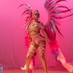 Nova Mas Carnival Costume Launch Feb 2020 (15)
