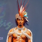 Nova Mas Carnival Costume Launch Feb 2020 (21)