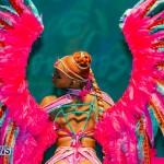 Nova Mas Carnival Costume Launch Feb 2020 (25)