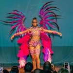 Nova Mas Carnival Costume Launch Feb 2020 (27)
