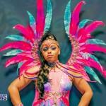 Nova Mas Carnival Costume Launch Feb 2020 (28)