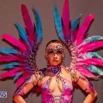 Nova Mas Carnival Costume Launch Feb 2020 (35)