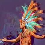 Nova Mas Carnival Costume Launch Feb 2020 (36)