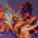 Nova Mas Carnival Costume Launch Feb 2020 (38)