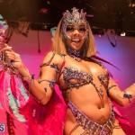 Nova Mas Carnival Costume Launch Feb 2020 (4)