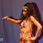 Nova Mas Carnival Costume Launch Feb 2020 (40)