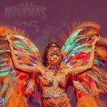 Nova Mas Carnival Costume Launch Feb 2020 (43)