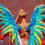 Nova Mas Carnival Costume Launch Feb 2020 (47)