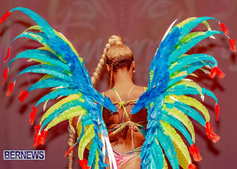 Nova-Mas-Carnival-Costume-Launch-Feb-2020-47