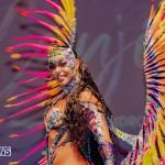 Nova Mas Carnival Costume Launch Feb 2020 (49)