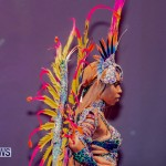 Nova Mas Carnival Costume Launch Feb 2020 (53)