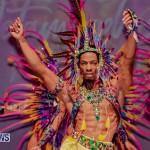 Nova Mas Carnival Costume Launch Feb 2020 (56)