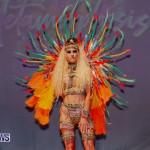 Nova Mas Carnival Costume Launch Feb 2020 (58)