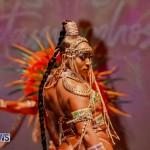 Nova Mas Carnival Costume Launch Feb 2020 (61)