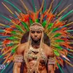 Nova Mas Carnival Costume Launch Feb 2020 (62)