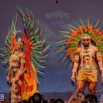 Nova Mas Carnival Costume Launch Feb 2020 (64)