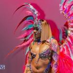 Nova Mas Carnival Costume Launch Feb 2020 (71)