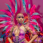 Nova Mas Carnival Costume Launch Feb 2020 (73)