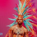 Nova Mas Carnival Costume Launch Feb 2020 (76)