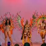 Nova Mas Carnival Costume Launch Feb 2020 (79)