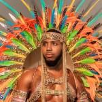 Nova Mas Carnival Costume Launch Feb 2020 (8)