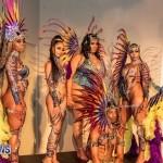 Nova Mas Carnival Costume Launch Feb 2020 (89)