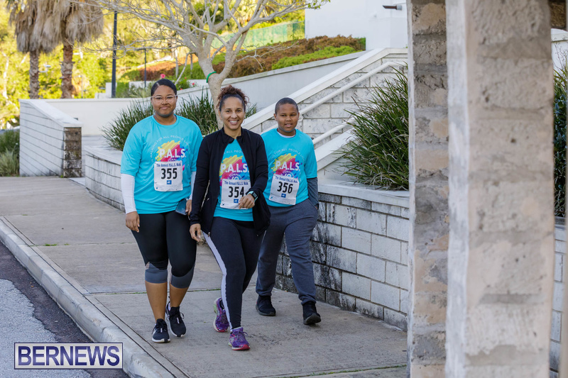 PALS walk charity Bermuda Feb 2020 (15)