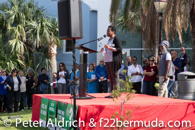 Patients-First-2020-rally-Bermuda-health-Feb-51