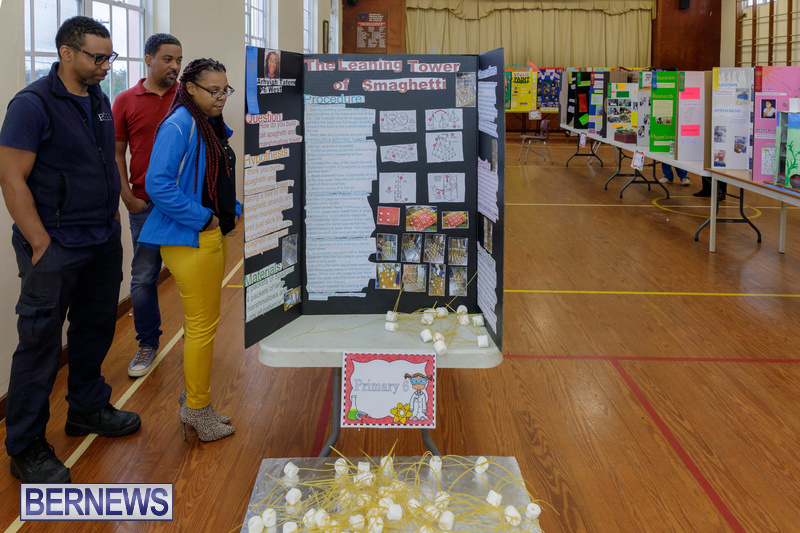 Purvis Primary School Science Fair Bermuda Feb 2020 (1)