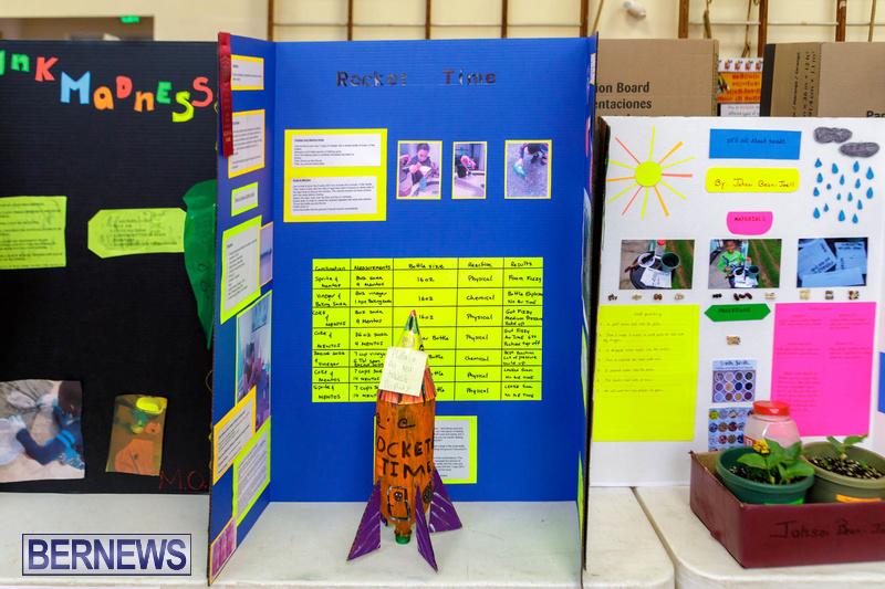 Purvis Primary School Science Fair Bermuda Feb 2020 (10)