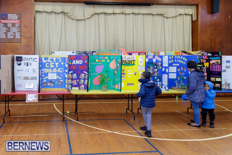 Purvis Primary School Science Fair Bermuda Feb 2020 (11)