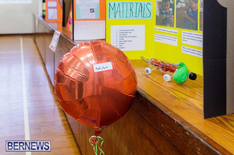 Purvis Primary School Science Fair Bermuda Feb 2020 (14)