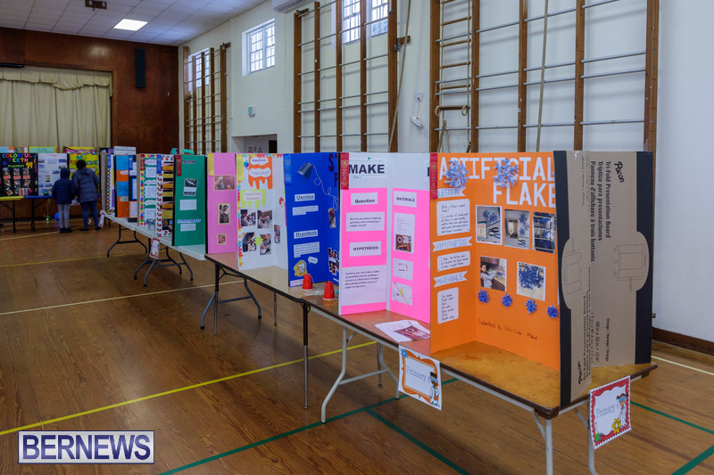 Purvis Primary School Science Fair Bermuda Feb 2020 (2)