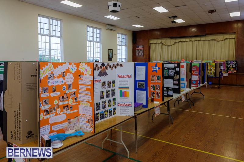 Purvis Primary School Science Fair Bermuda Feb 2020 (3)